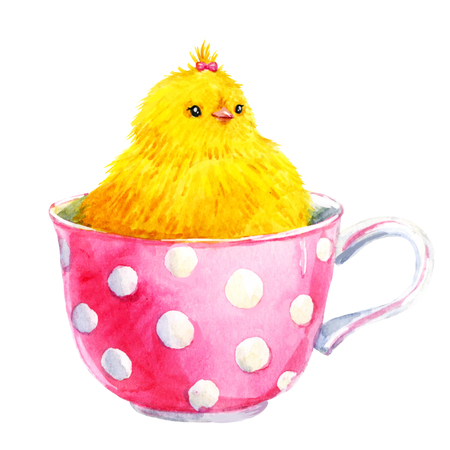tea cup: Beautiful image with watercolor cute yellow chick in a cup