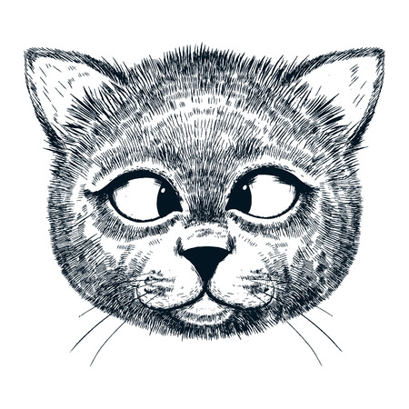 kid portrait: Beautiful vector image of smart and cute hand drawn cat