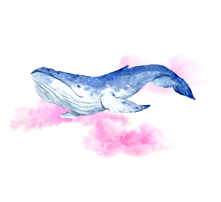pacific: Watercolor blue whale Stock Photo