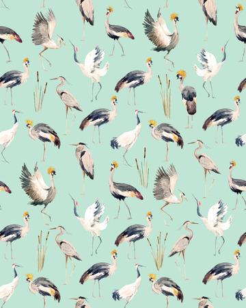 Watercolor vector african crane pattern Vektorové ilustrace