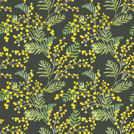 Watercolor mimosa vector pattern Illustration