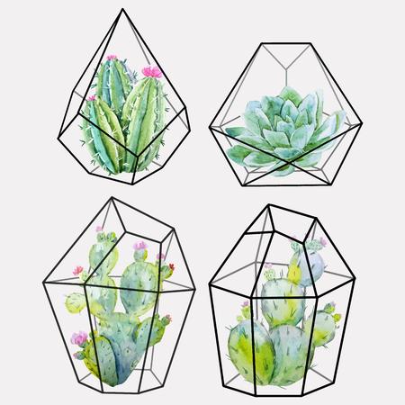Watercolor cactus vector set