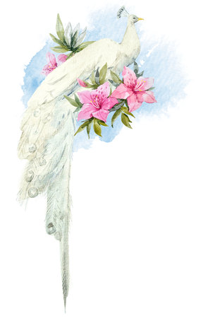 Watercolor white peacock with flowers