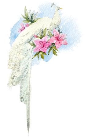 Waterverf witte pauw met bloemen