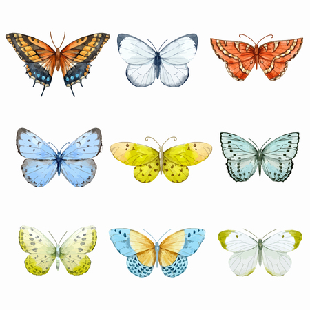Watercolor butterflies vector set
