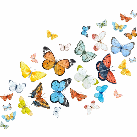 Watercolor butterflies vector set Фото со стока - 77523908