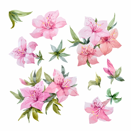 Beautiful set with watercolor rhododendron flowers and leaves Vectores