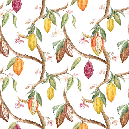 Watercolor cacao pattern Stok Fotoğraf - 85542741