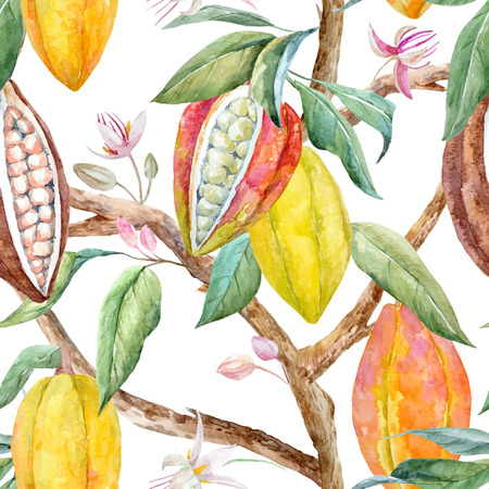 Watercolor cacao vector pattern