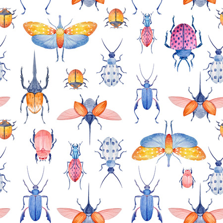 Aquarell Käfer Muster Standard-Bild - 80935395