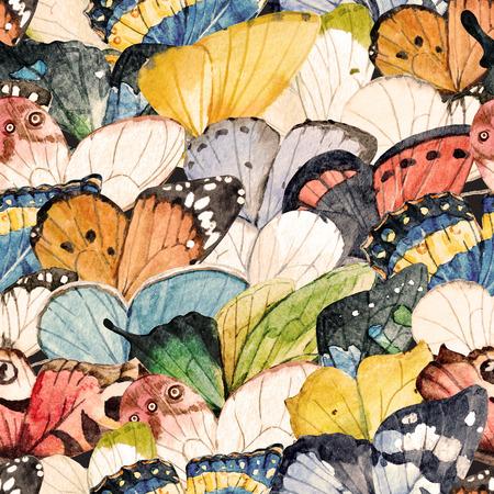 Aquarelle motif de papillon Banque d'images - 80935414