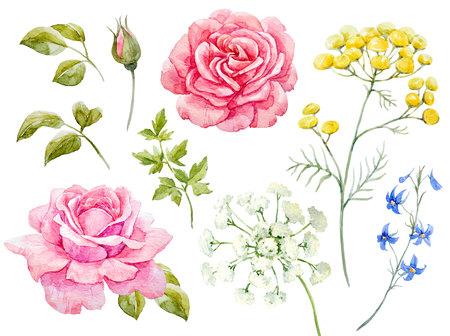 Conjunto floral de acuarela