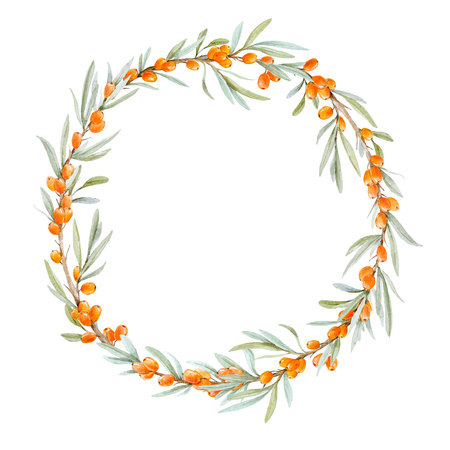 Watercolor sea buckthorn wreath