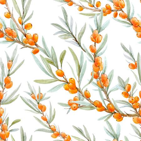 Watercolor sea buckthorn pattern