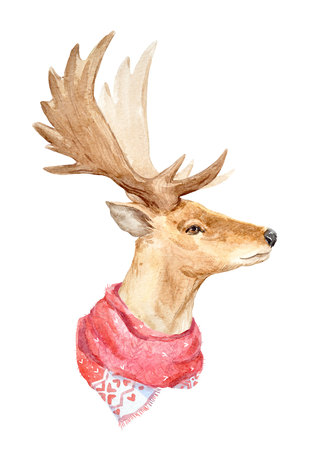 new: Watercolor deer portrait
