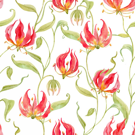 Watercolor vector gloriosa rothschildiana pattern Ilustração