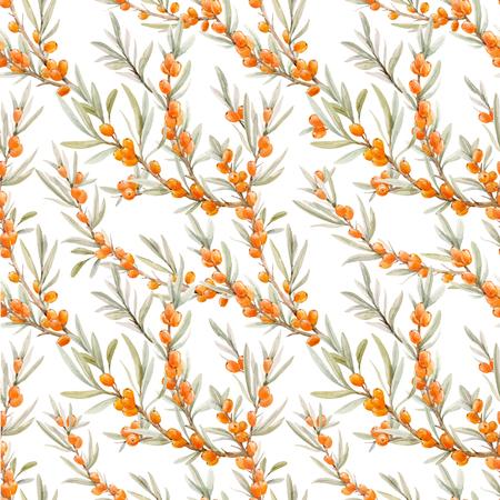 Watercolor sea buckthorn vector pattern Illustration