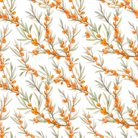 Watercolor sea buckthorn vector pattern Ilustrace