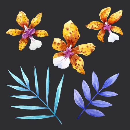 Watercolor orchid flowers set