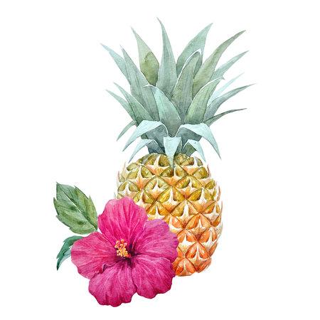 Waterverf ananas fruit