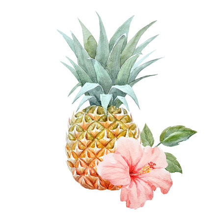 Watercolor pineapple fruit Stok Fotoğraf - 82874474
