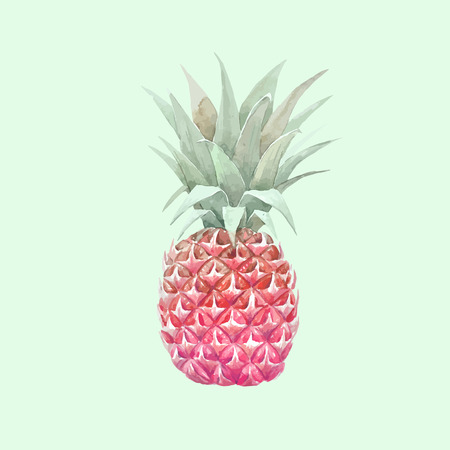 Watercolor vector pineapple fruit Фото со стока - 83393268