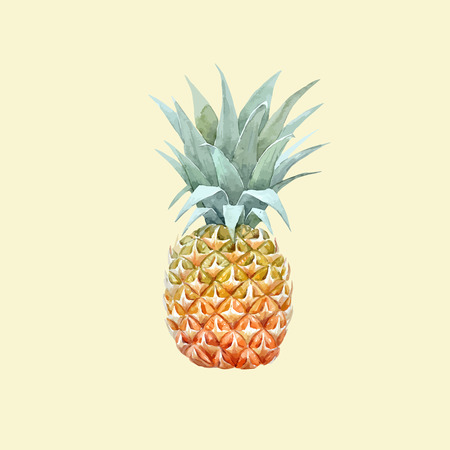 Watercolor vector pineapple fruit Фото со стока