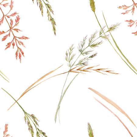 Wild field grass pattern