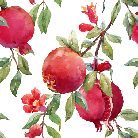 Pomegranate fruit vector pattern on a very cool background.