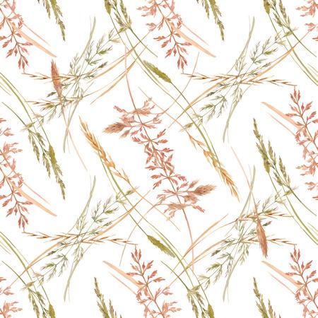Wild field grass vector pattern vector illustration Illustration