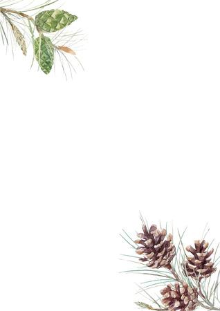Watercolor fir cone composition