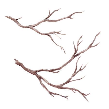 Watercolor fall tree branch Standard-Bild
