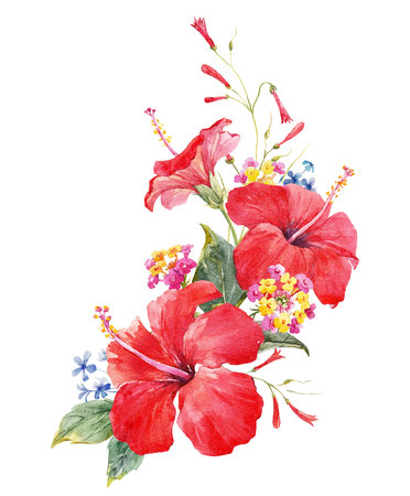 Watercolor hibiscus composition Stock Photo