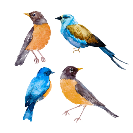 Watercolor bird vector set Vectores