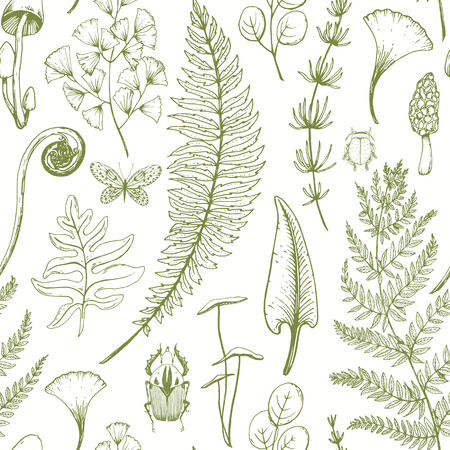 Beautiful vector seamless pattern with hand drawn fern leaves Vectores
