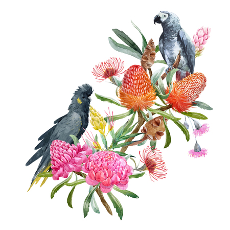 Watercolor banksia flower vector composition