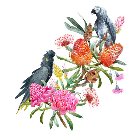Watercolor banksia flower composition