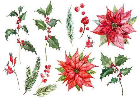 水彩クリスマスポインセチアセット 写真素材