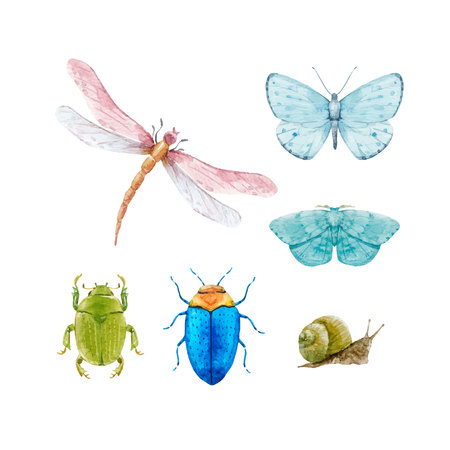 Watercolor insect vector set Фото со стока