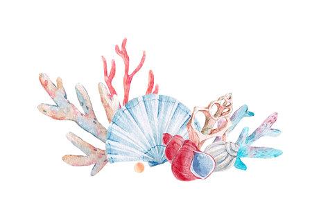 Watercolor coral composition Banco de Imagens