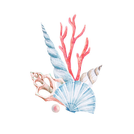 Beautiful vector composition with watercolor underwater shells and corals