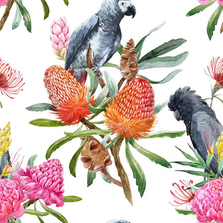 Watercolor tropical australian pattern Stock fotó
