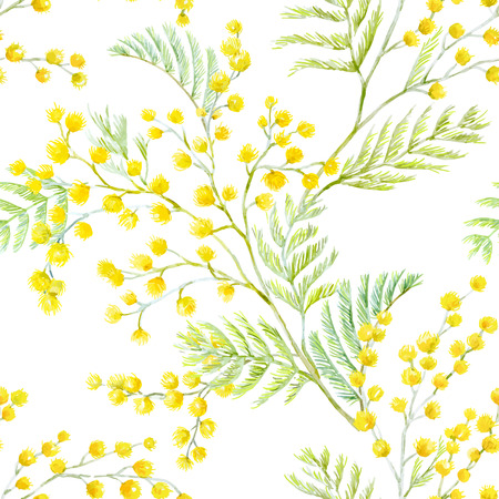Beautiful seamless vector pattern with hand drawn watercolor mimosa flowers Ilustração