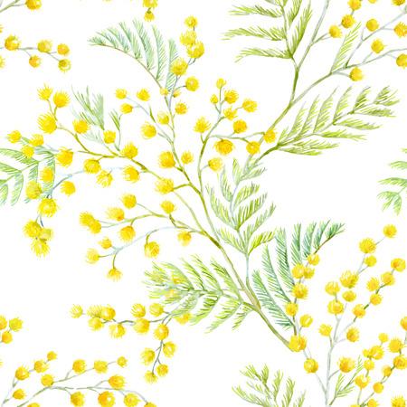 Mooi naadloos vector patroon met hand getekende aquarelmimosa bloemen Stockfoto - 92667394