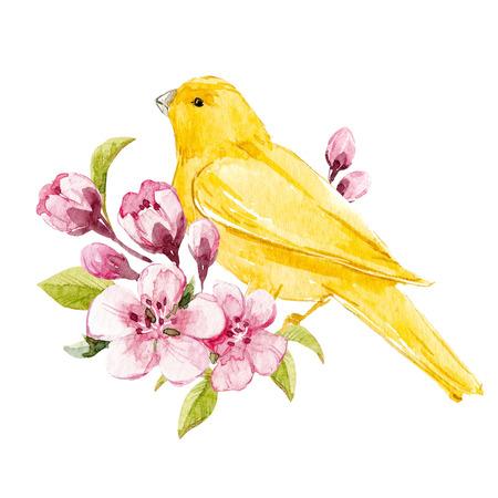 Aquarell Blumenzusammensetzung Standard-Bild - 93209325