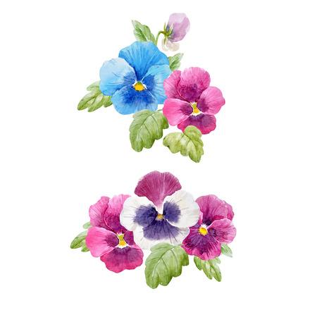 透明な背景に水彩画の手描きのパンジーの花と美しいベクトルセット