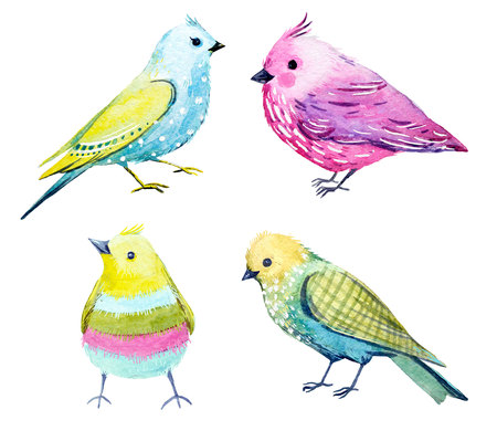Watercolor bird set