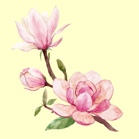 Aquarel magnolia bloemen vector samenstelling Stock Illustratie