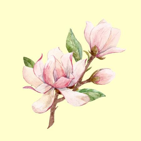 Watercolor magnolia floral vector composition