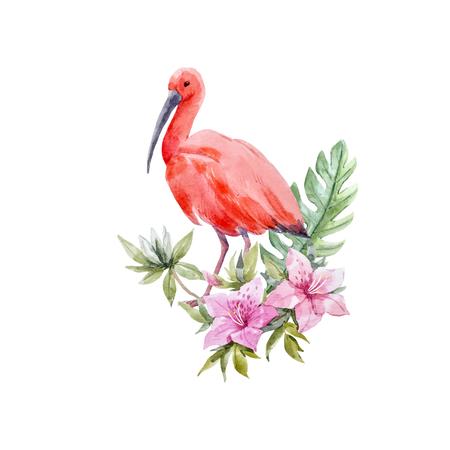Composición de vectores ibis bird acuarela Foto de archivo - 93774284